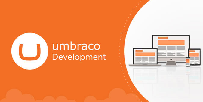 Umbraco CMS Development