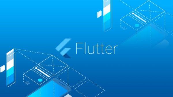 flutter application