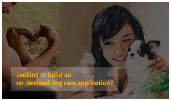 On-demand dog care application