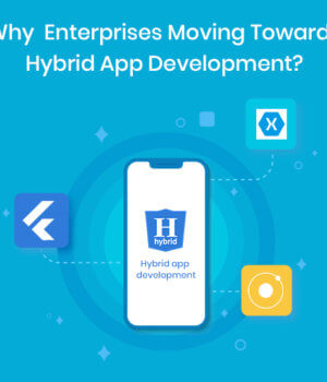 Why Are Enterprises Moving Towards Hybrid App Development?