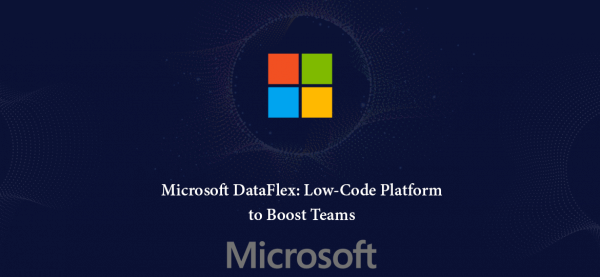 Microsoft Dataflex