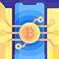 Bitcoin Customization & Integration